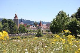 Stadt Berching mit Stadtmauer